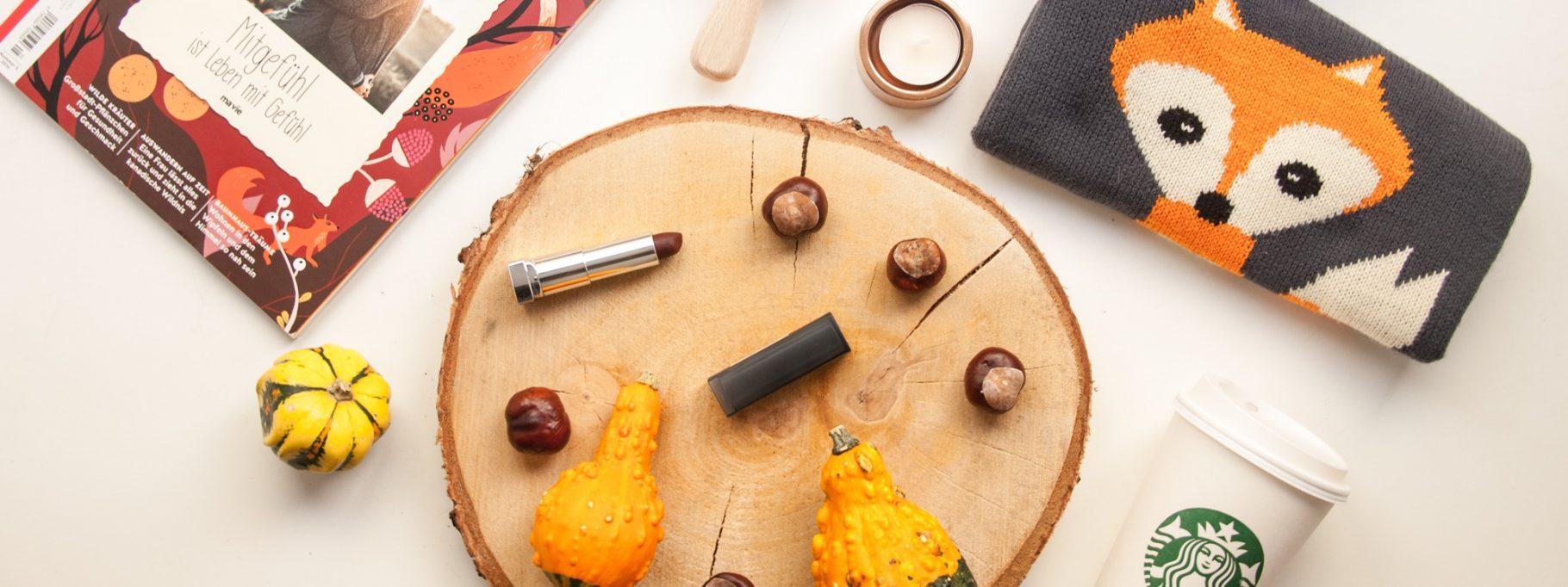 Fall Favourites | Was ich diesen Herbst liebe 🍂